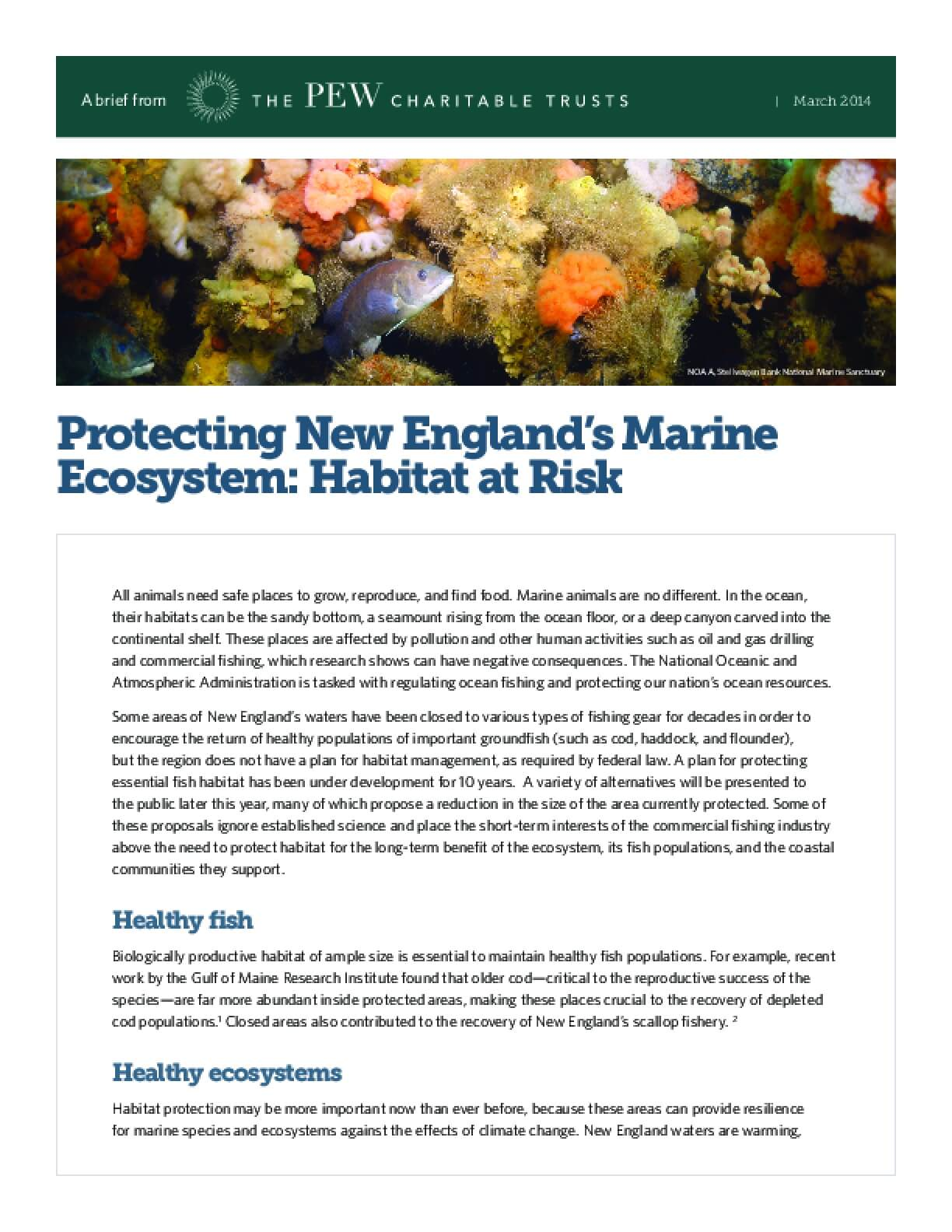 Protecting New England's Marine Ecosystem: Habitat at Risk
