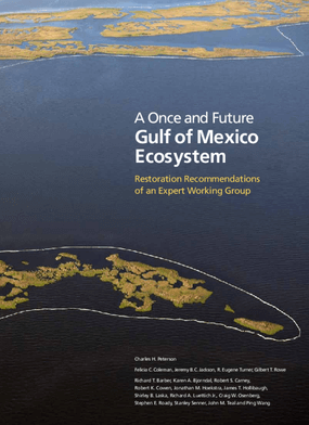 Once and Future Gulf of Mexico Ecosystem: Restoration Recommendations of an Expert Working Group