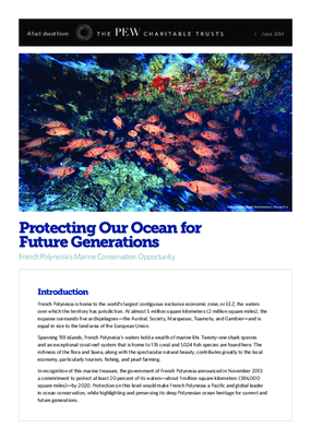 Protecting Our Ocean for Future Generations: French Polynesia's Marine Conservation Opportunity