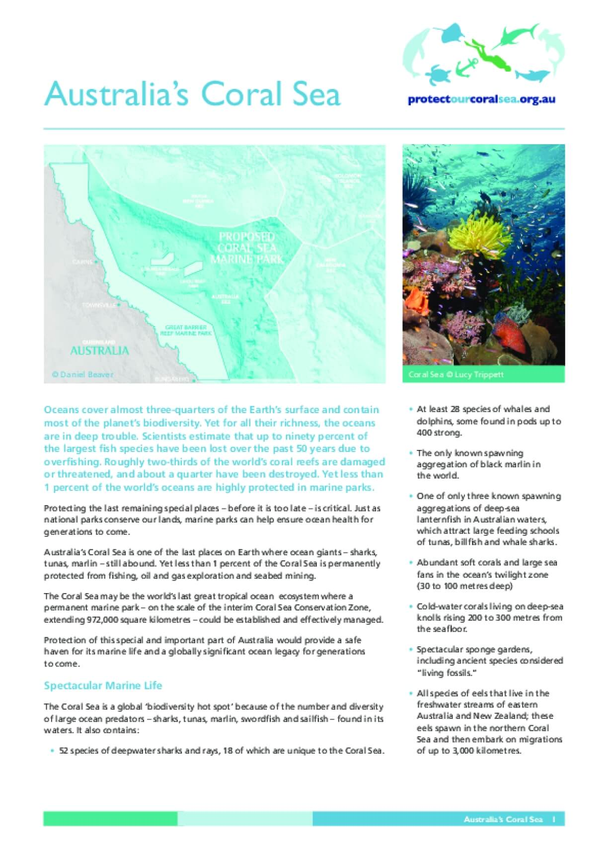Australia Creates World's Largest System of Marine Parks