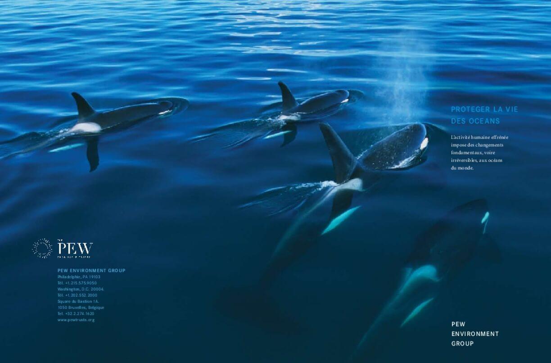 Proteger la vie des Oceans