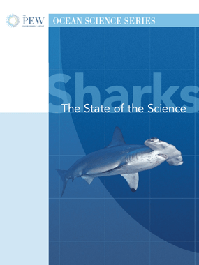 Sharks - The State of the Science