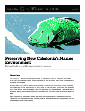 Preserving New Caledonia's Marine Environment:  The Benefits of a Large and Highly Protected Marine Reserve