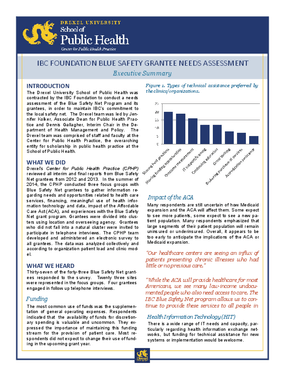 Independence Blue Cross Foundation Blue Safety Grantee Needs Assessment, Executive Summary