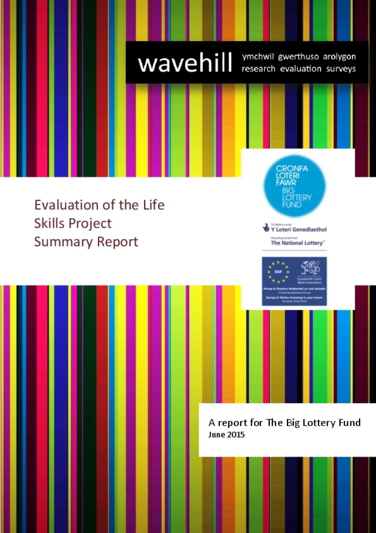Evaluation of the Life Skills Project, Summary Report