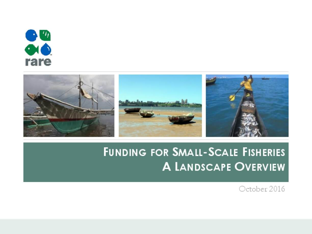 Funding for Small-scale Fisheries A Landscape Overview