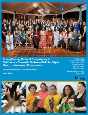 Strengthening Cultural Competency in California's Domestic Violence Field for High-Need, Underserved Populations