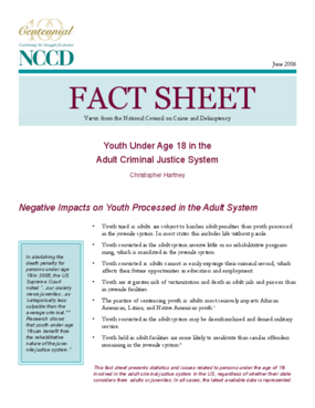 Fact Sheet: Youth Under Age 18 in the Adult Criminal Justice System