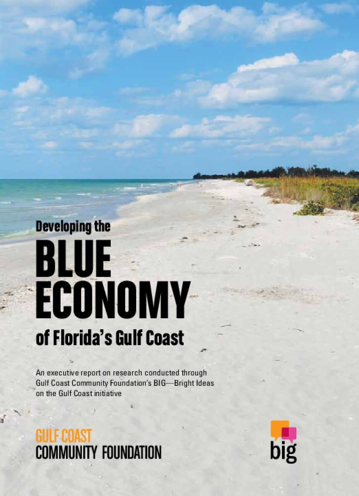 Developing the Blue Economy of Florida's Gulf Coast – Summary Report