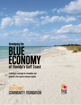 Developing the Blue Economy of Florida's Gulf Coast – Full Report