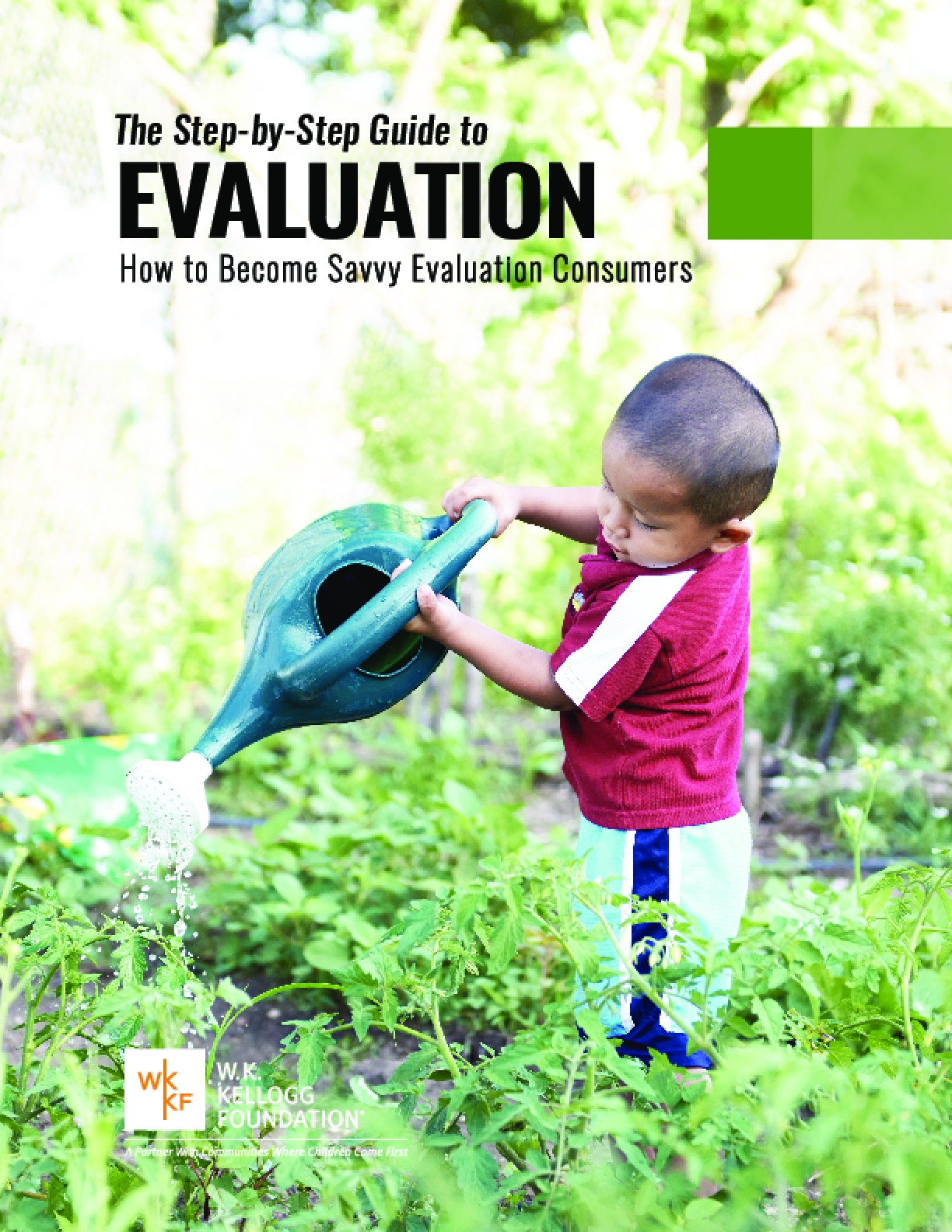 The Step-by-Step Guide to Evaluation: How to Become Savvy Evaluation Consumers