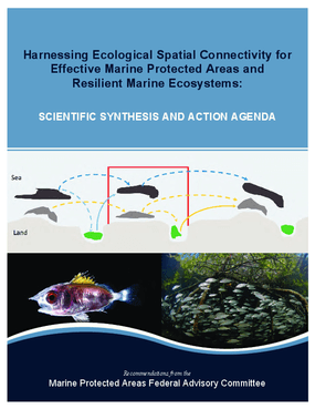 Harnessing Ecological Spatial Connectivity for Effective Marine Protected Areas and Resilient Marine Ecosystems: Action Agenda & Scientific Synthesis