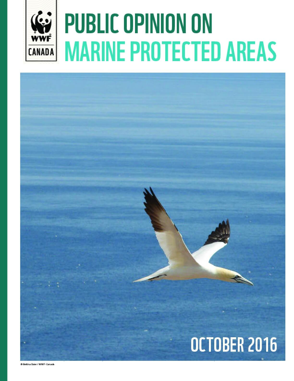Public Opinion on Marine Protected Areas