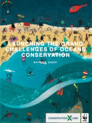 Launching the Grand Challenges for Ocean Conservation