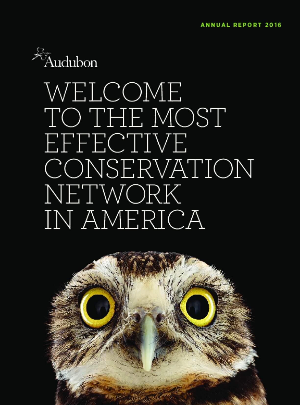 Audubon Annual Report 2016: Welcome to the Most Effective Conservation Network in America