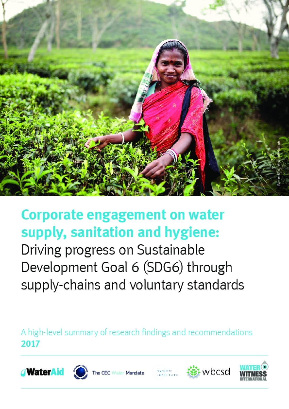 Corporate Engagement on Water Supply, Sanitation and Hygiene: Driving Progress on Sustainable Development Goal 6 (SDG6) Through Supply-chains and Voluntary Standards