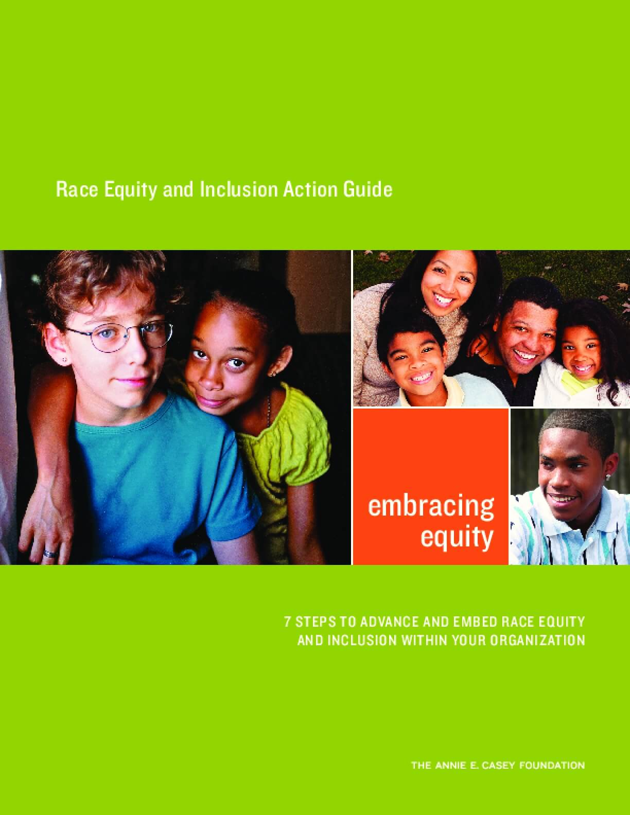Race Equity and Inclusion Action Guide: 7 Steps to Advance and Embed Race Equity and Inclusion Within Your Organization.