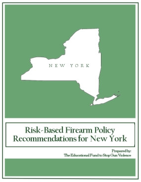Risk-Based Firearm Policy Recommendations for New York