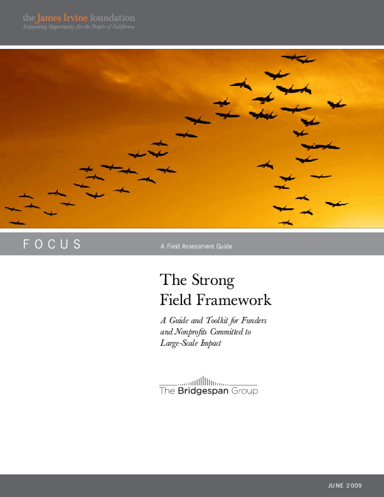 The Strong Field Framework: A Guide and Toolkit for Funders and Nonprofits Committed to Large-Scale Impact