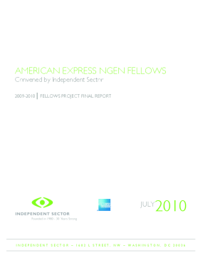 American Express NGen Fellows Convened By Independent Sector: 2009-2010 Fellows Project Final Report