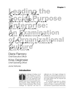 Leading the Social Purpose Enterprise: An Examination of Organizational Culture