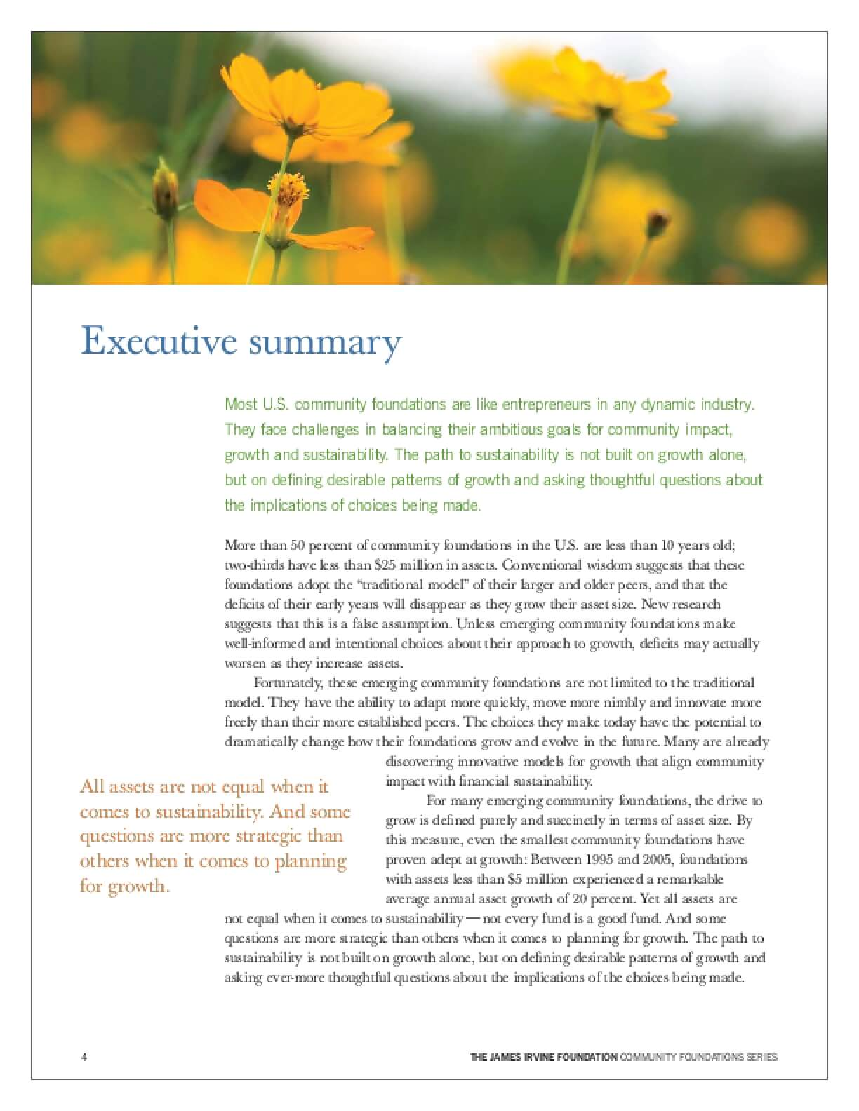 Growing Smarter: Achieving Sustainability in Emerging Community Foundations: Executive summary