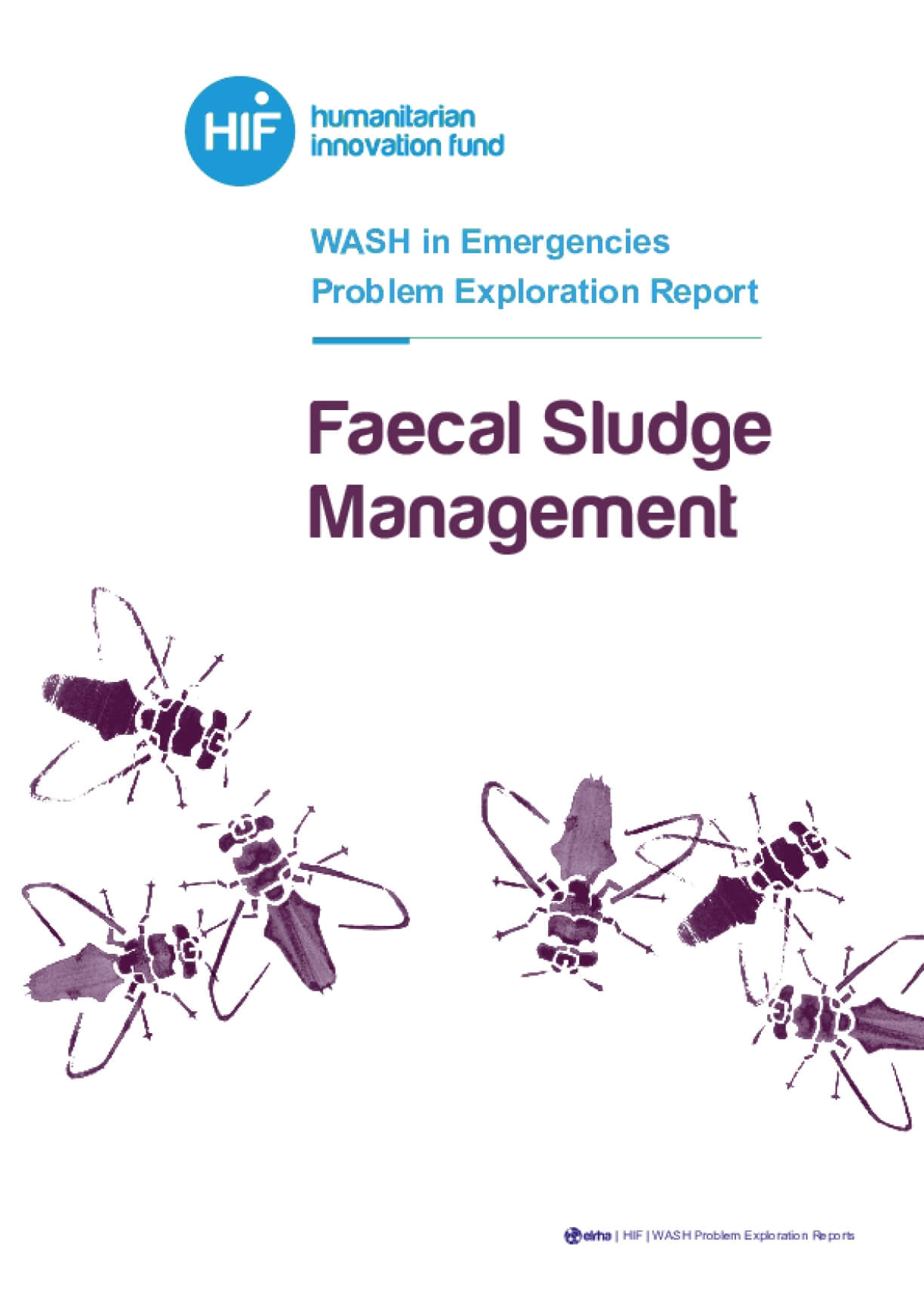 Faecal Sludge Management