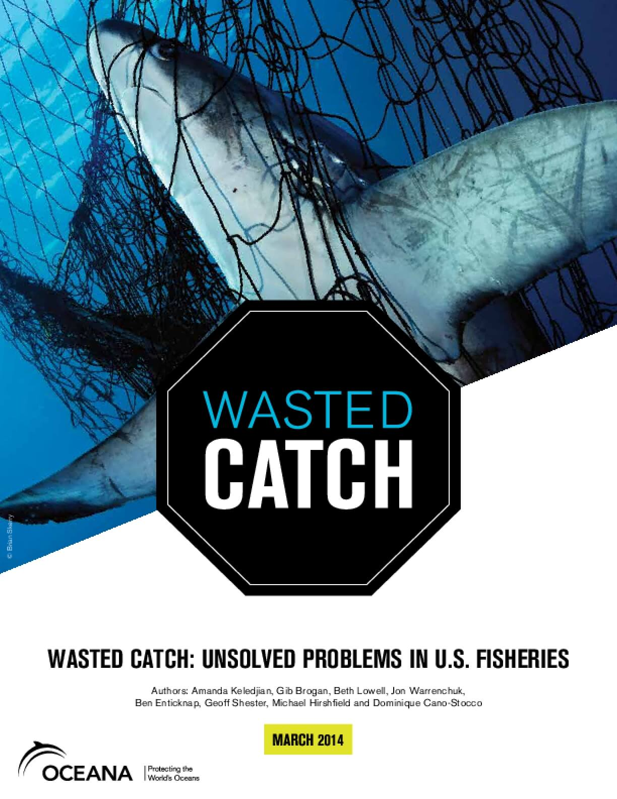 Wasted Catch: Unsolved Problems in U.S. Fisheries