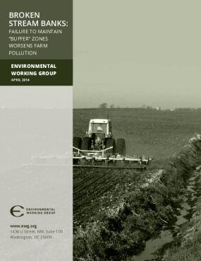 "Broken Stream Banks: Failure to maintain ""Buffer"" Zones Worsens Farm Pollution"