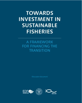 Towards investment in sustainable fisheries: A framework for financing the transition
