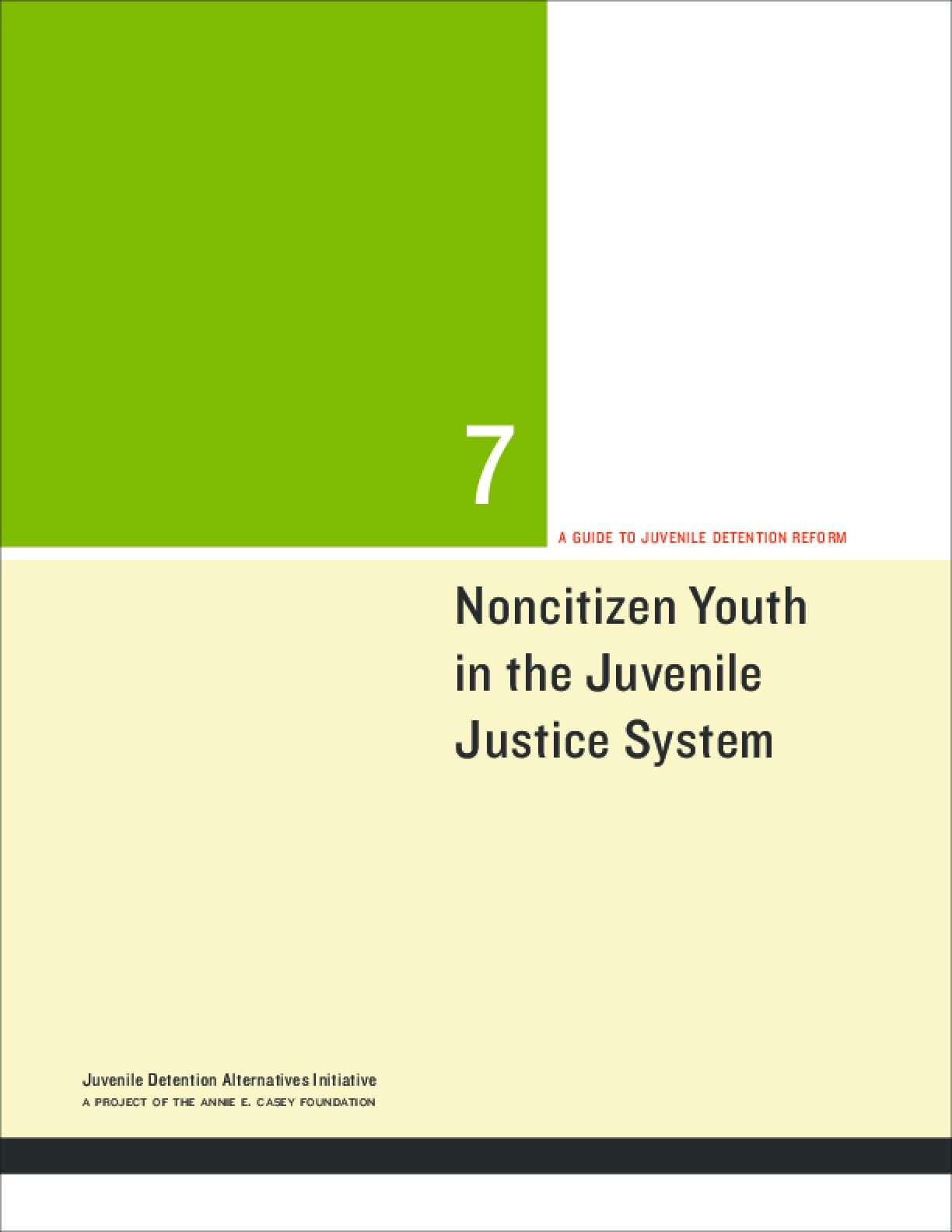 Noncitizen Youth in the Juvenile Justice System: A guide to juvenile detention reform