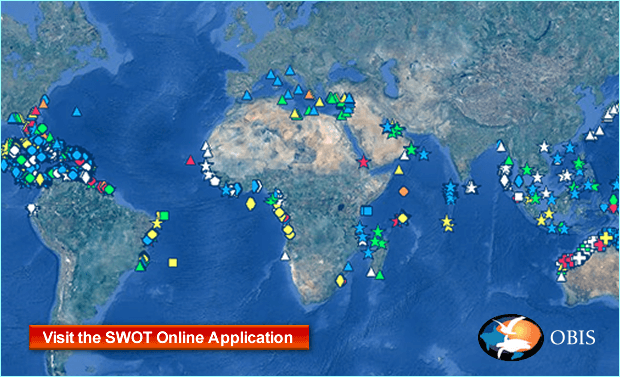 SWOT global sea turtle interactive map