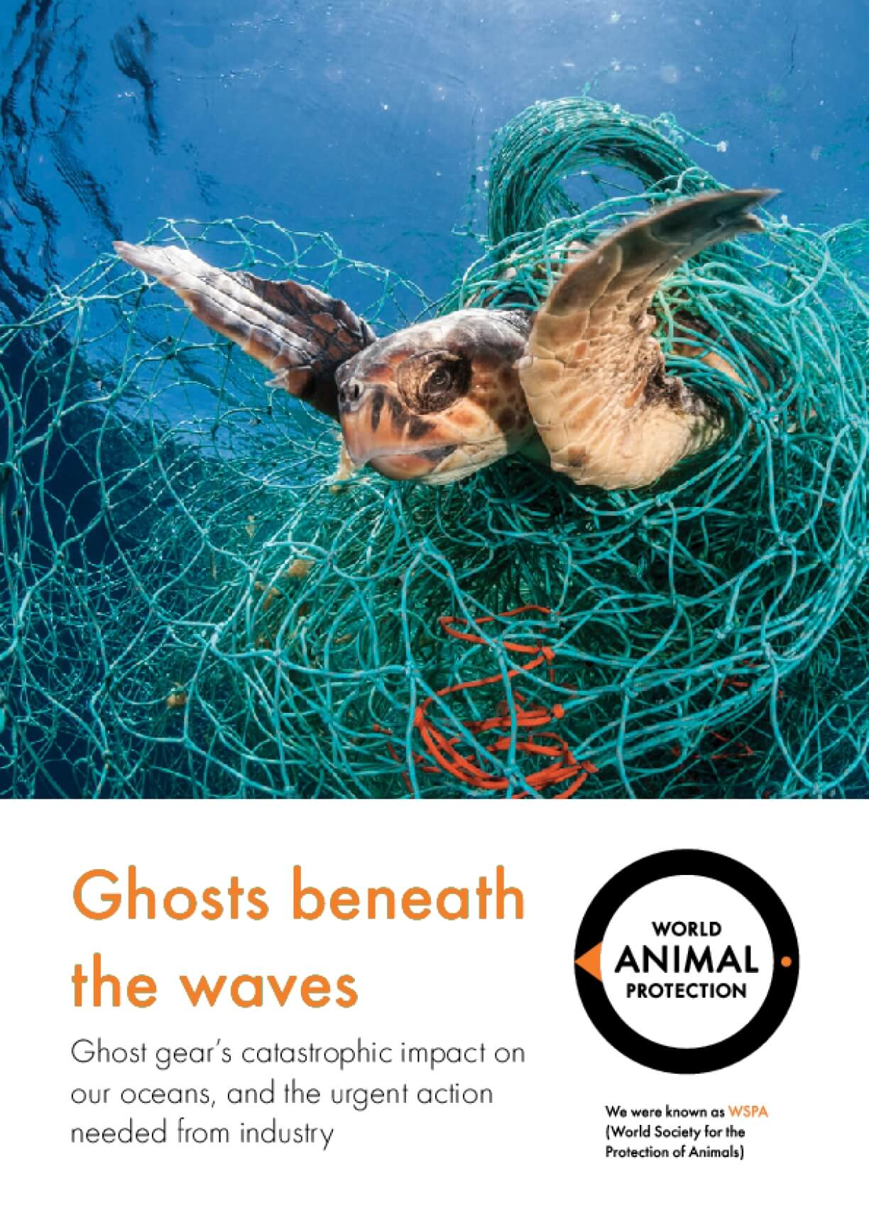 Ghosts beneath the waves