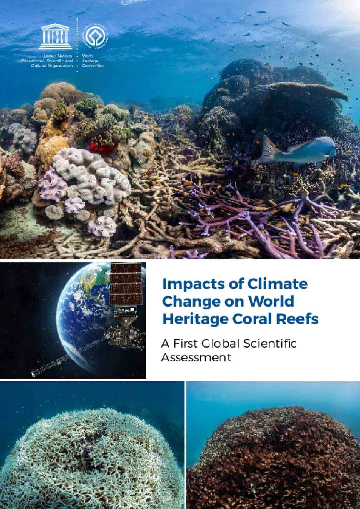 Impacts of Climate Change on World Heritage Coral Reefs: A First Global Scientific Assessment