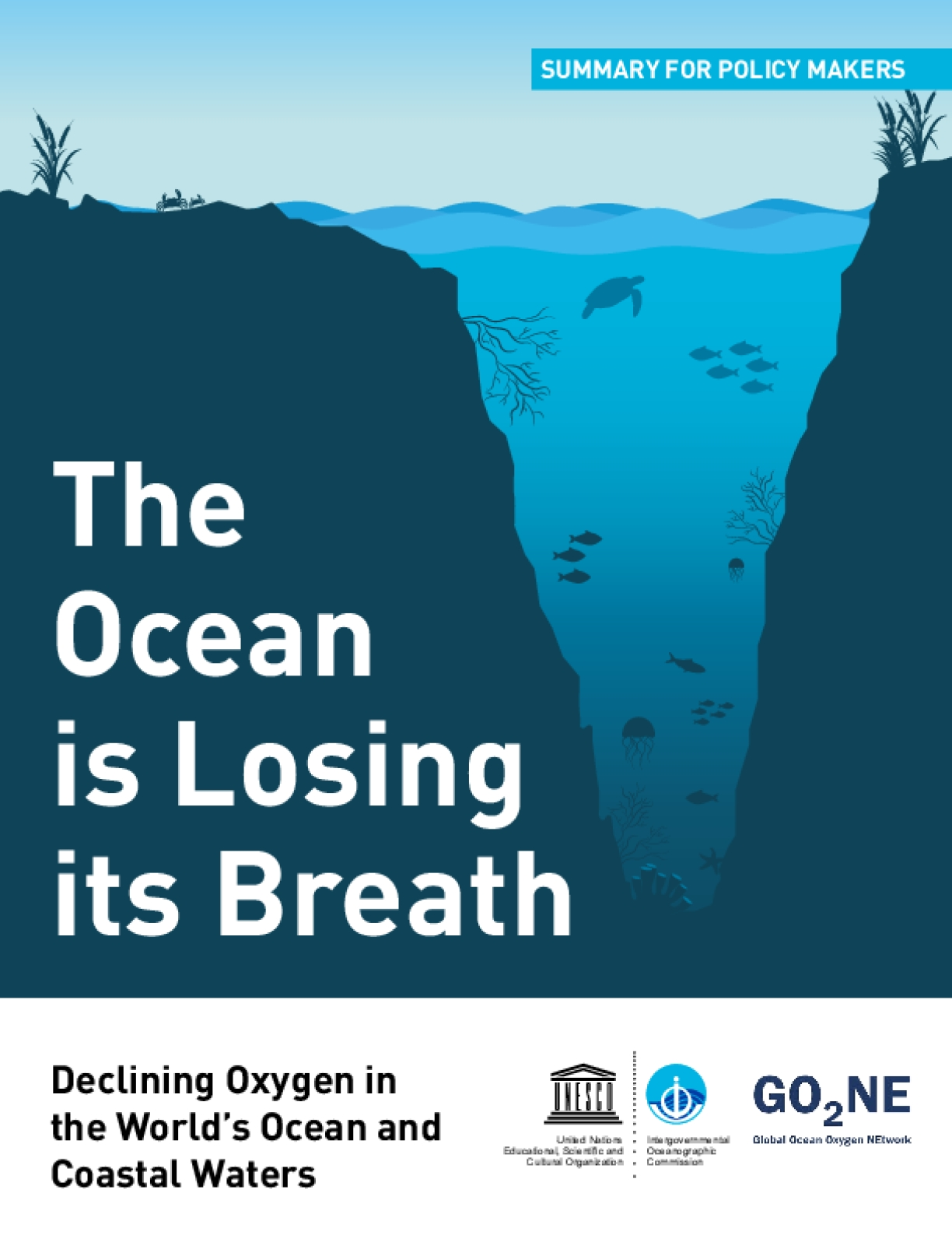 The Ocean is Losing its Breath: Declining Oxygen in the World's Ocean and Coastal Waters