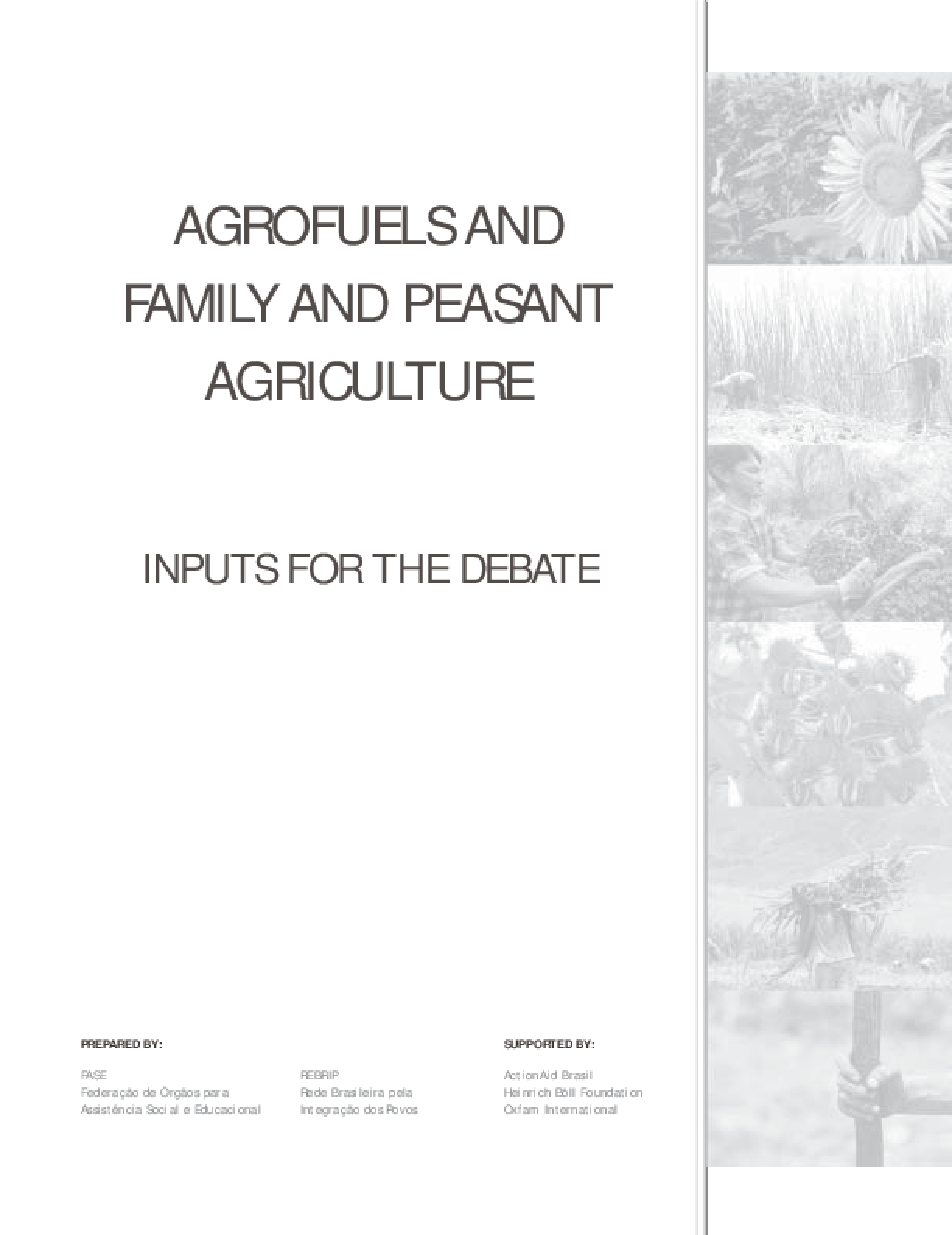 Agrofuels and Family and Peasant Agriculture: Inputs for the debate