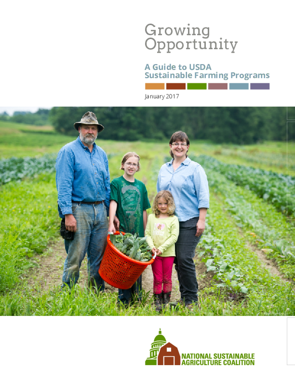 Growing Opportunity: A Guide to USDA Sustainable Farming Programs