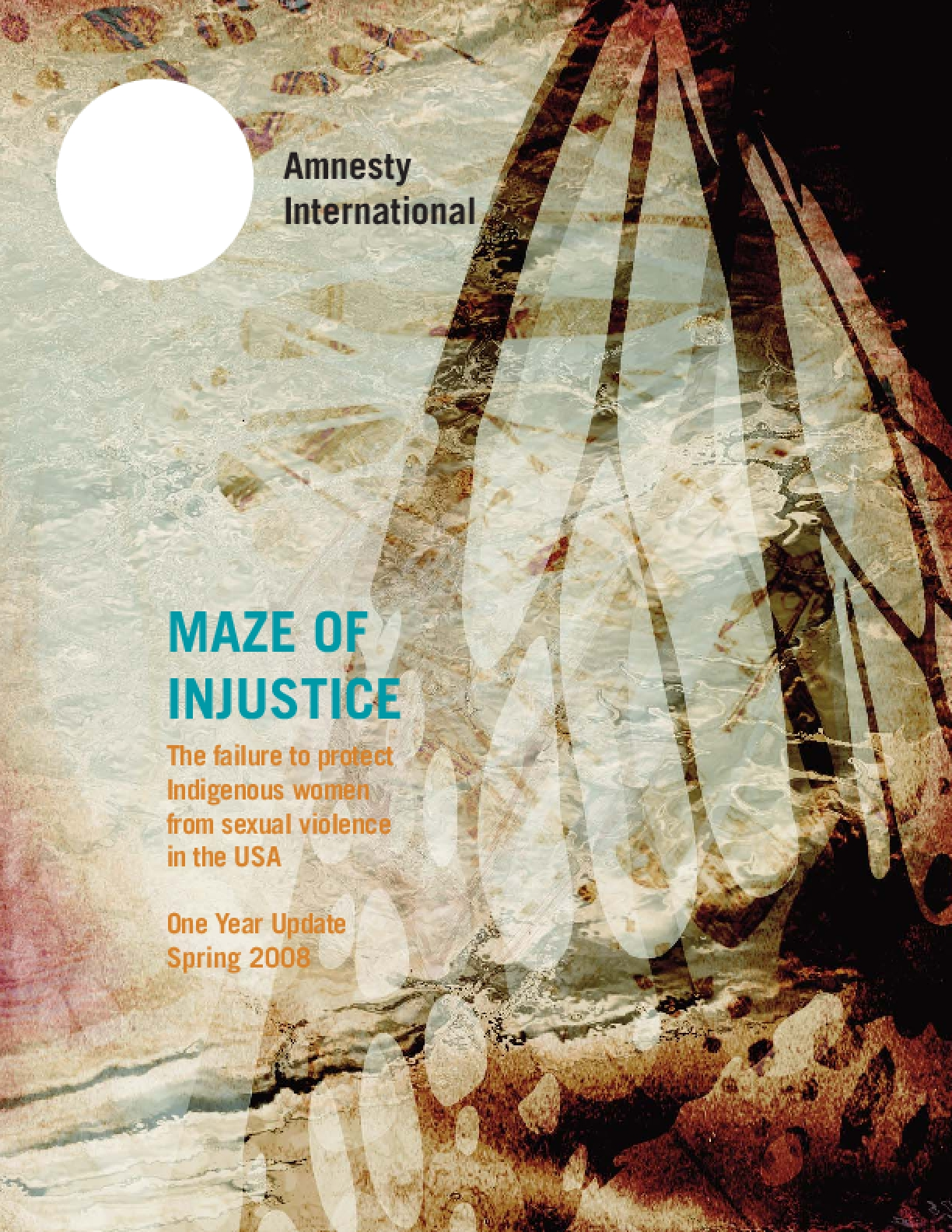 Maze of Injustice: The Failure to Protect Indigenous Women from Sexual Violence in the USA - One Year Update Spring 2008