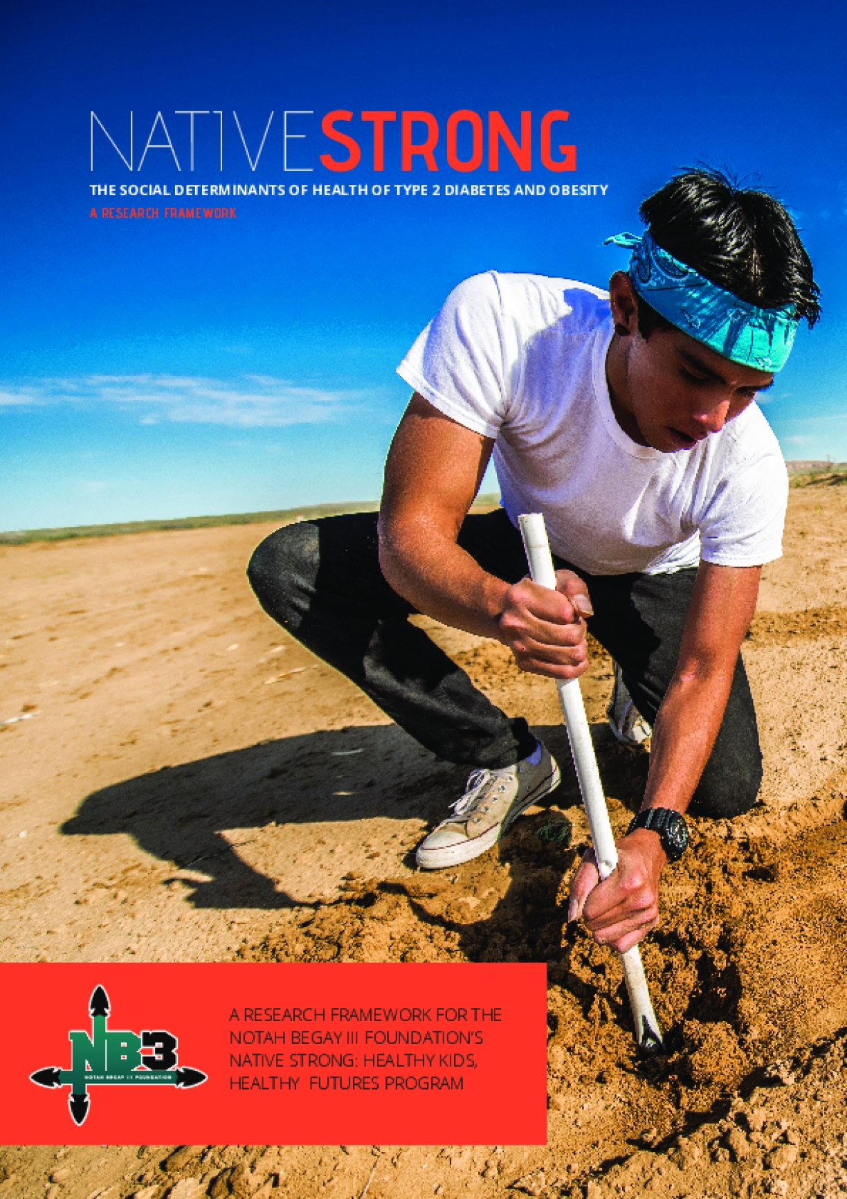 Native Strong: The Social Determinants of Health of Type 2 Diabetes and Obesity, A Research Framework