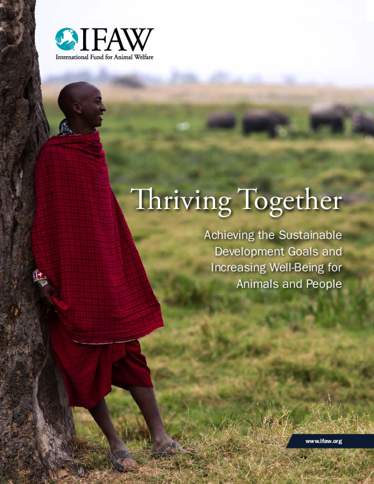 Thriving Together: Achieving the Sustainable Development Goals and Increasing Well-Being for Animals and People