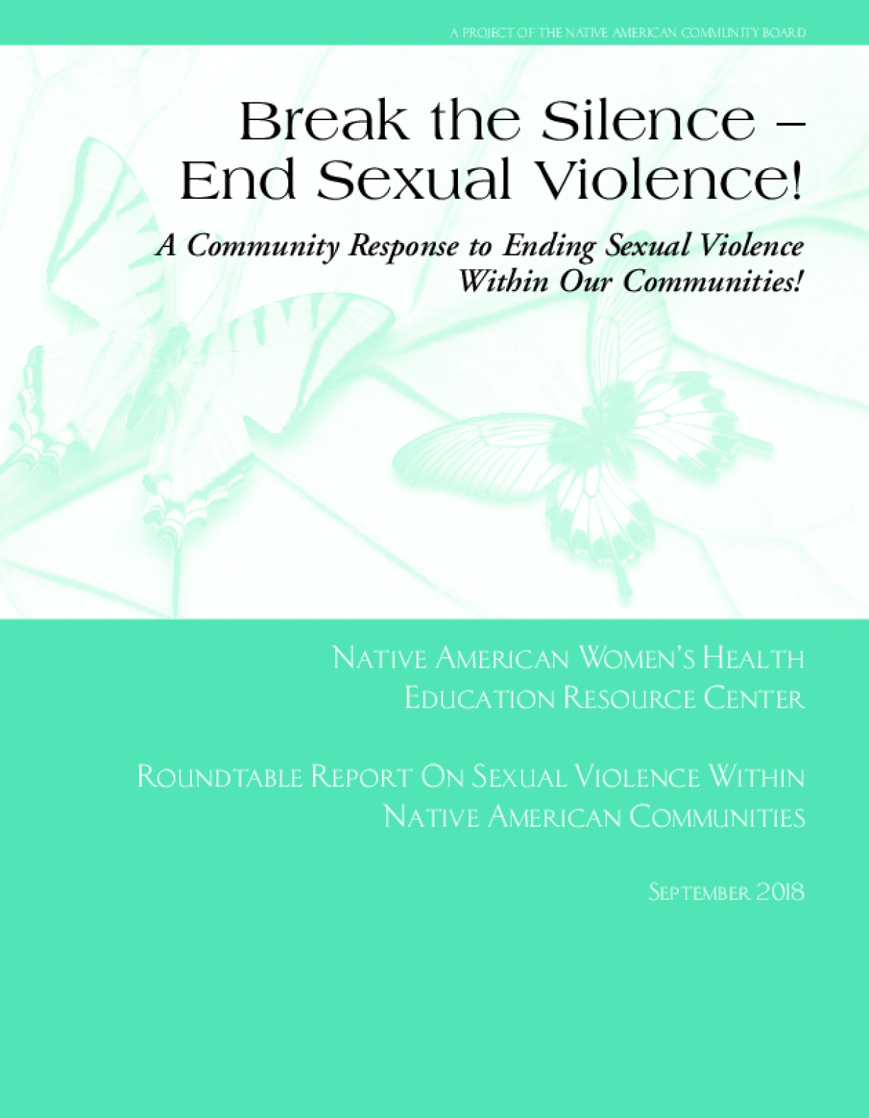 Break the Silence - End Sexual Violence: A Community Response to Ending Sexual Violence Within our Communities!