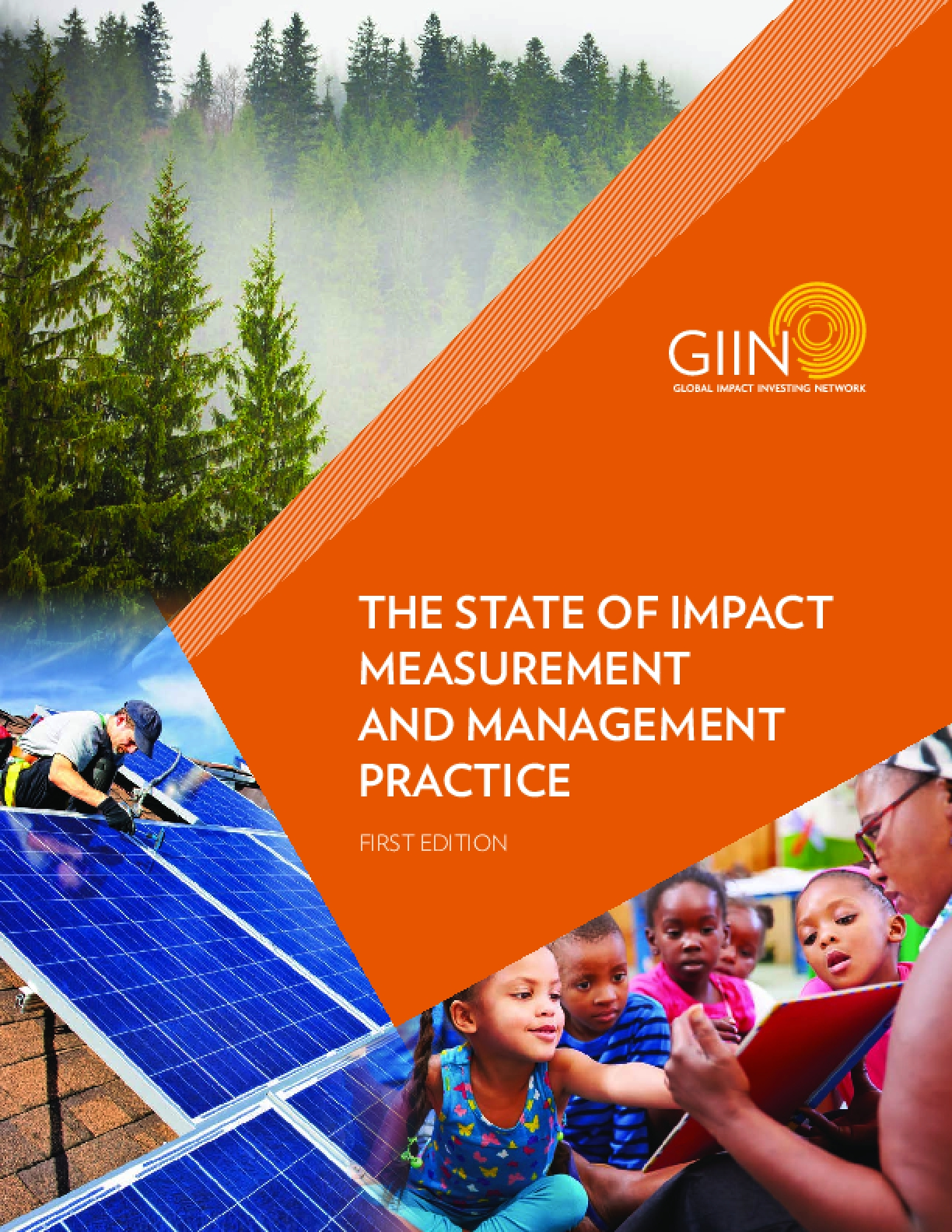 The State of Impact Measurement and Management Practice
