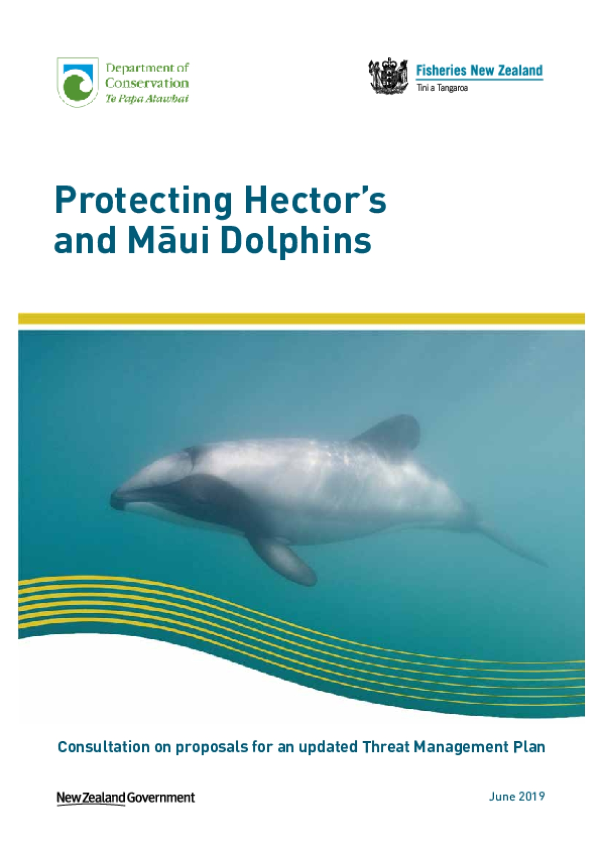 Protecting Hector's and Māui Dolphins