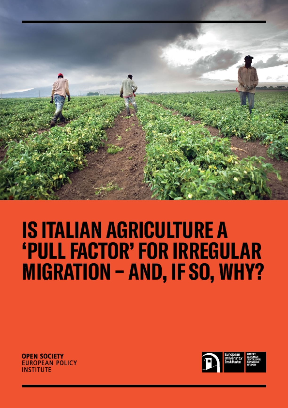 "Is Italian Agriculture ""Pull Factor"" for Irregular Migration—And, If So, Why?"