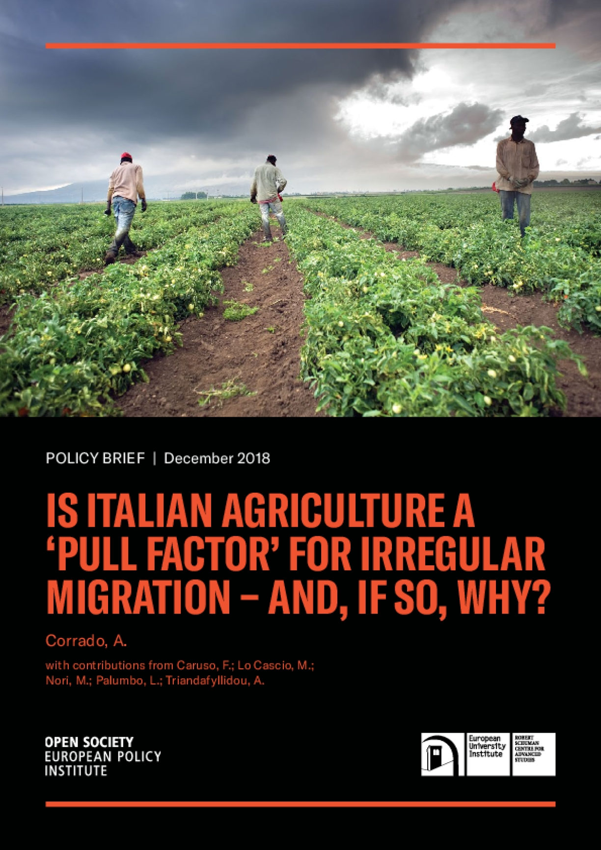 "Policy Brief: Is Italian Agriculture a ""Pull Factor"" for Irregular Migration—And, If So, Why?"