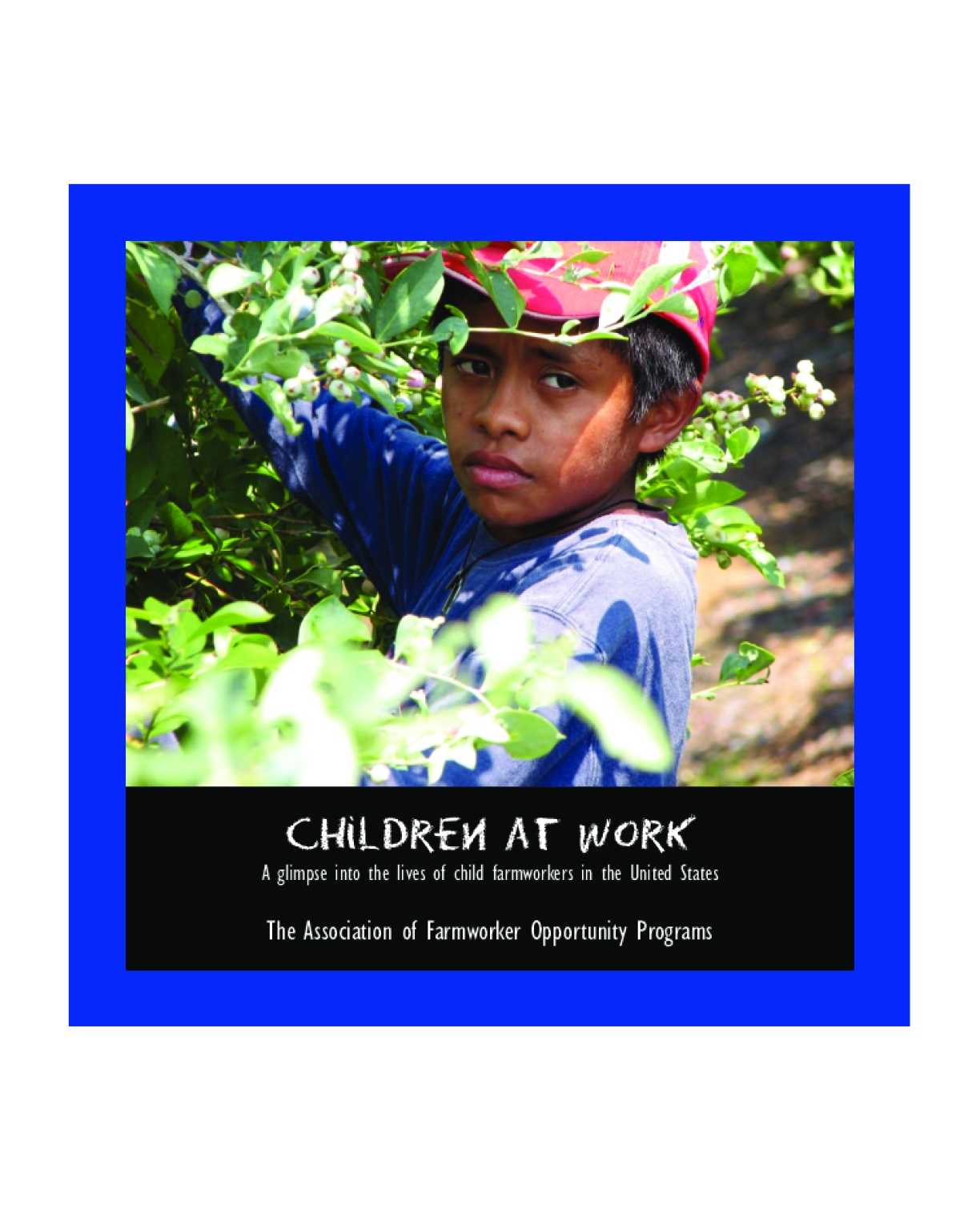 Children at Work: A Glimpse Into the Lives of Child Farmworkers in the United States