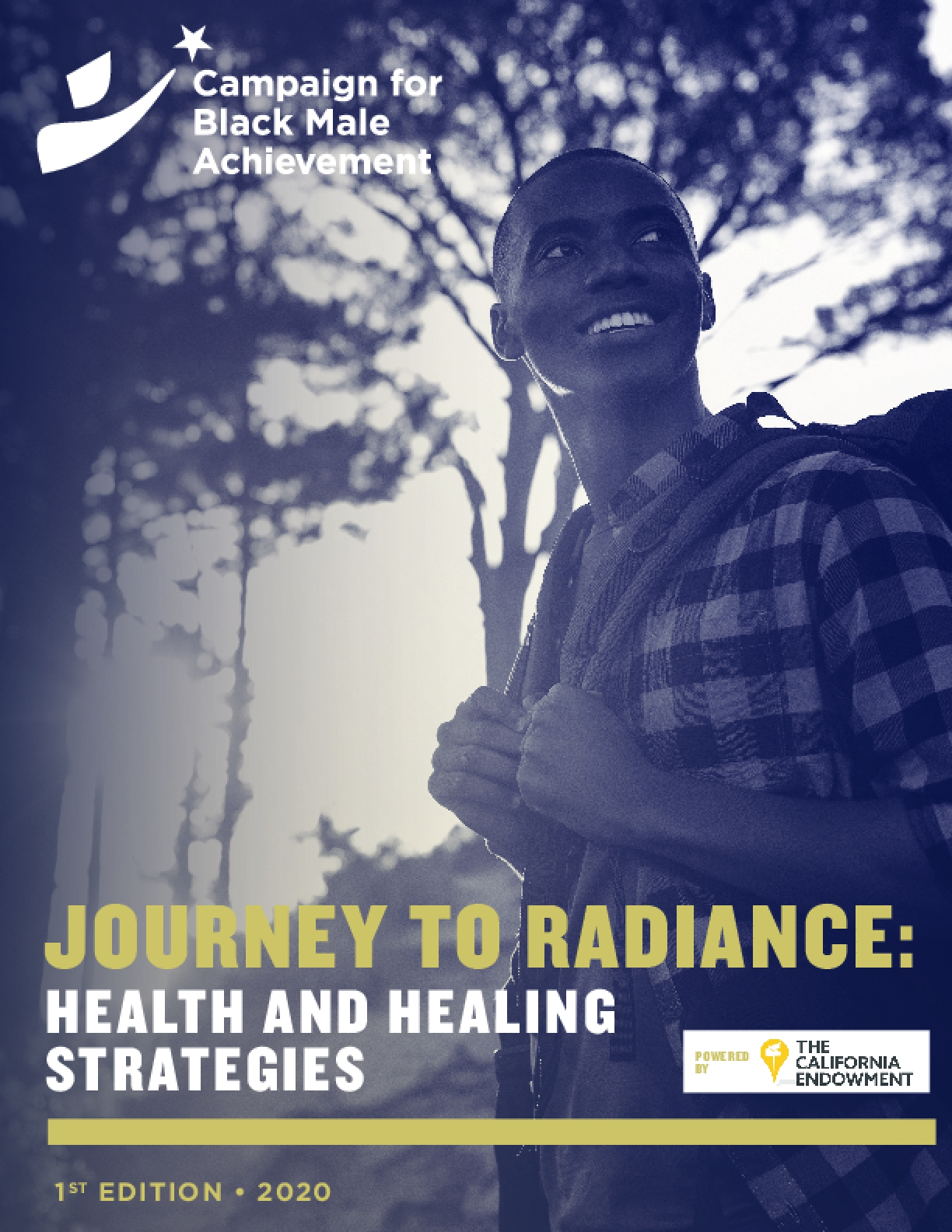JOURNEY TO RADIANCE: HEALTH AND HEALING STRATEGIES