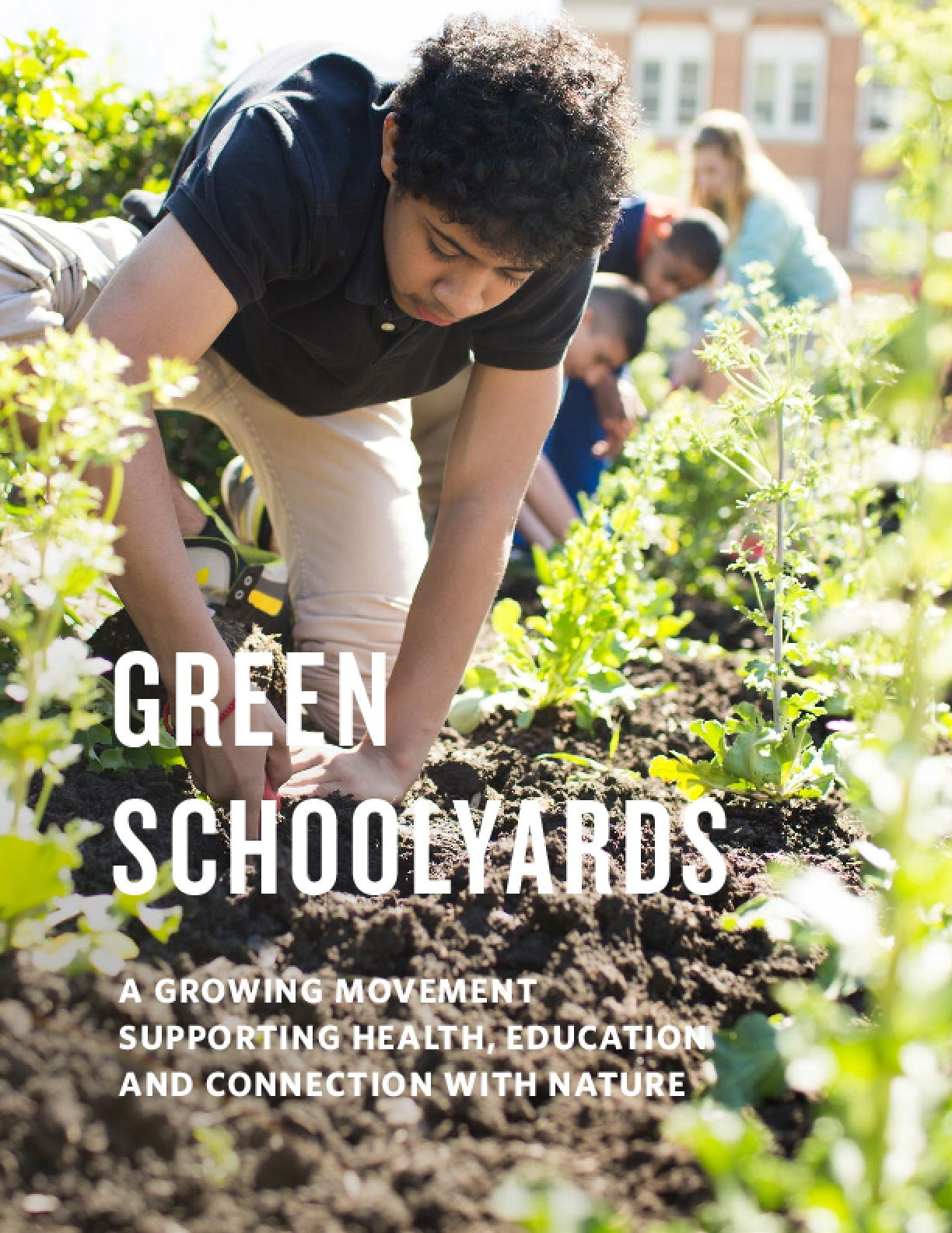 Green Schoolyards: A Growing Movement Supporting Health, Education, and Connection with Nature