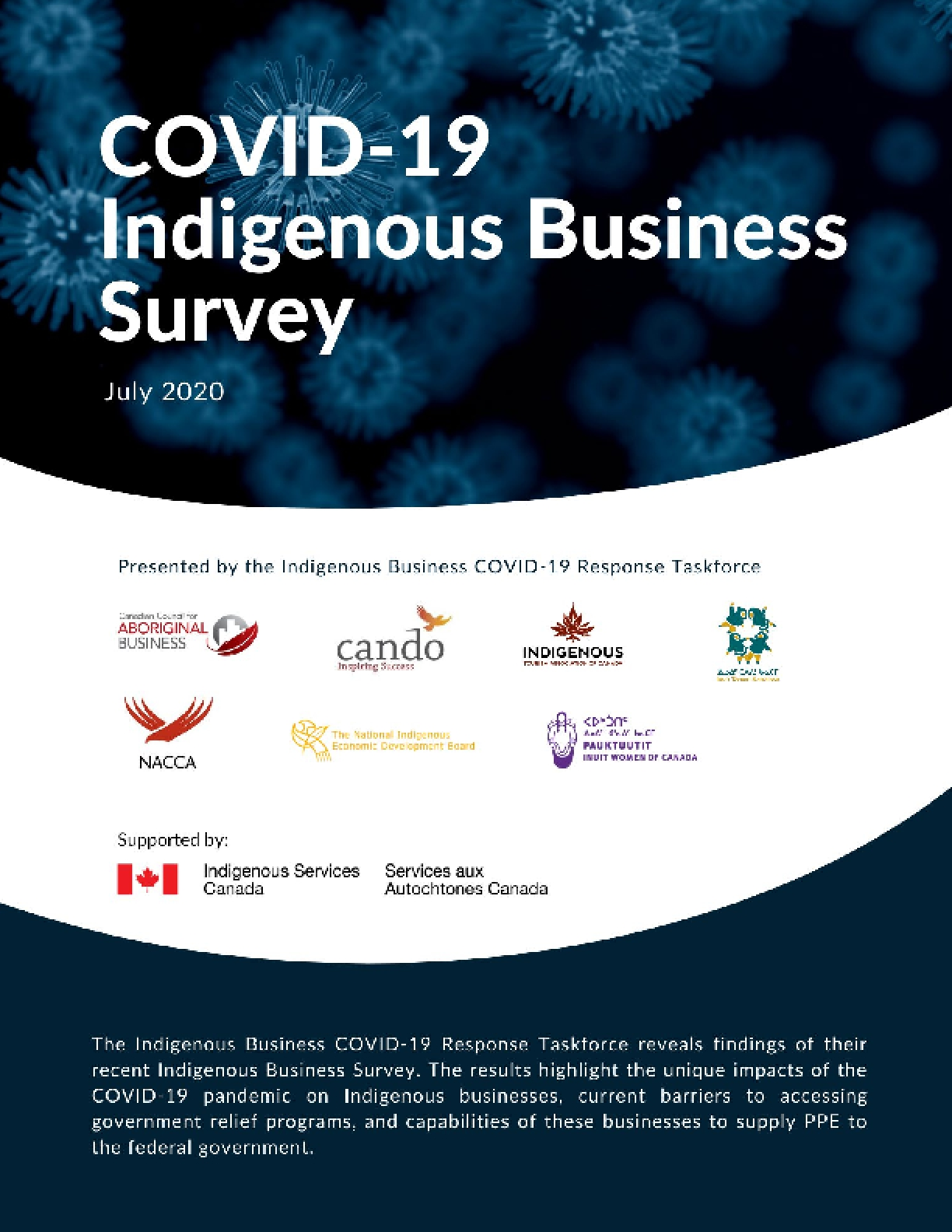 The COVID-19 Indigenous Business Survey