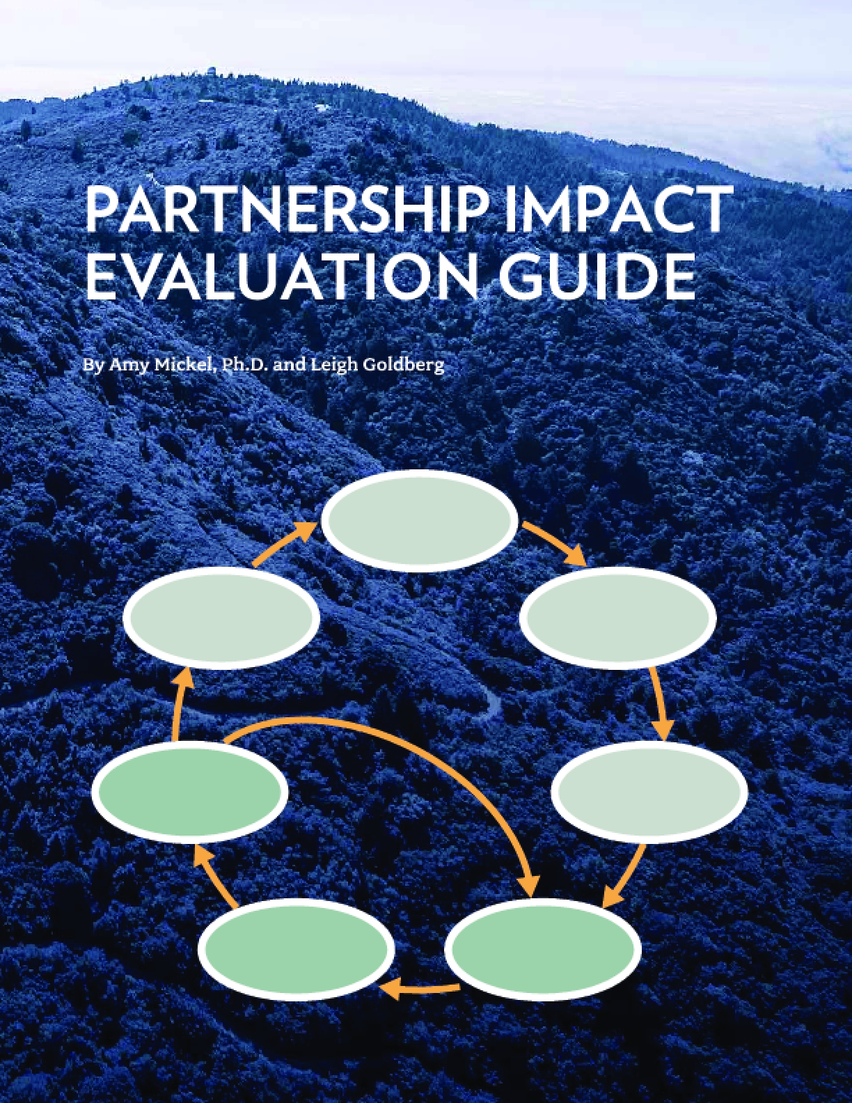 Partnership Impact Evaluation Guide